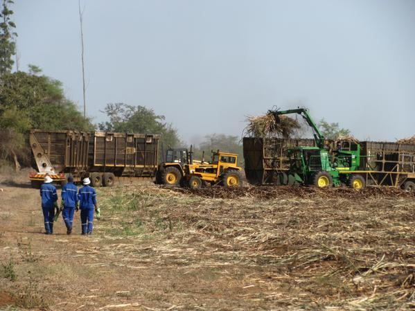 New paper on the sugar industry in Swaziland