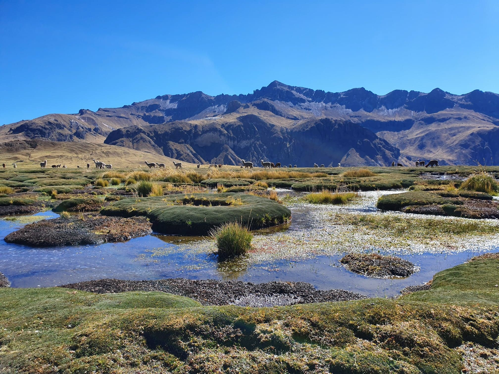 Researching community awareness of new water initiatives in Peru