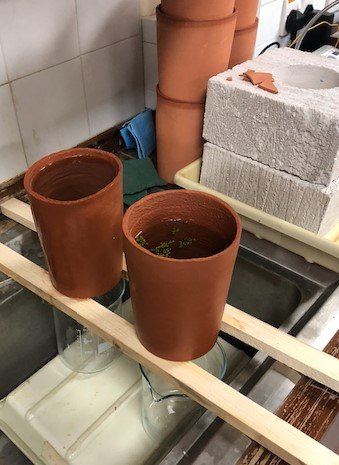 Investigating the potential of ceramic pot filters to treat stored rainwater